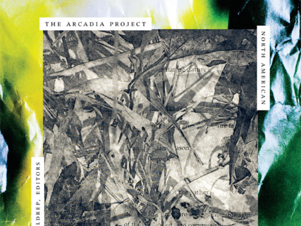 The Arcadia Project: North American Postmodern Pastoral's video poster
