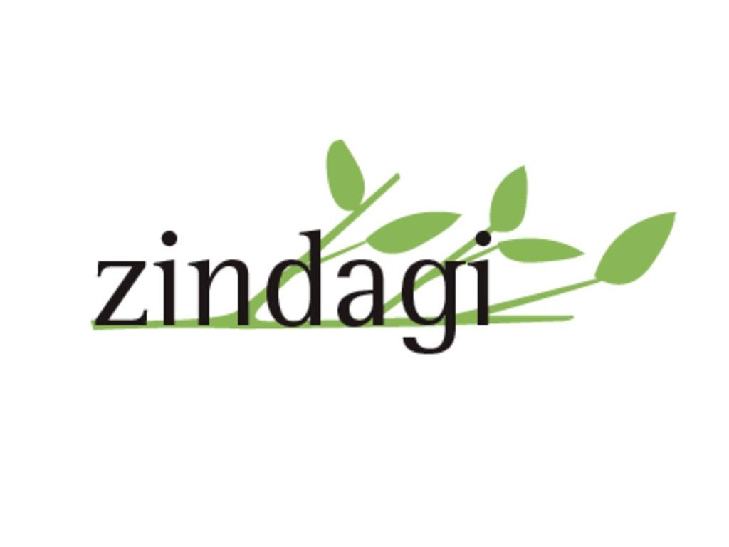 Zindagi: Using Social Gaming to Teach Tweens Financial Self-sufficiency's video poster