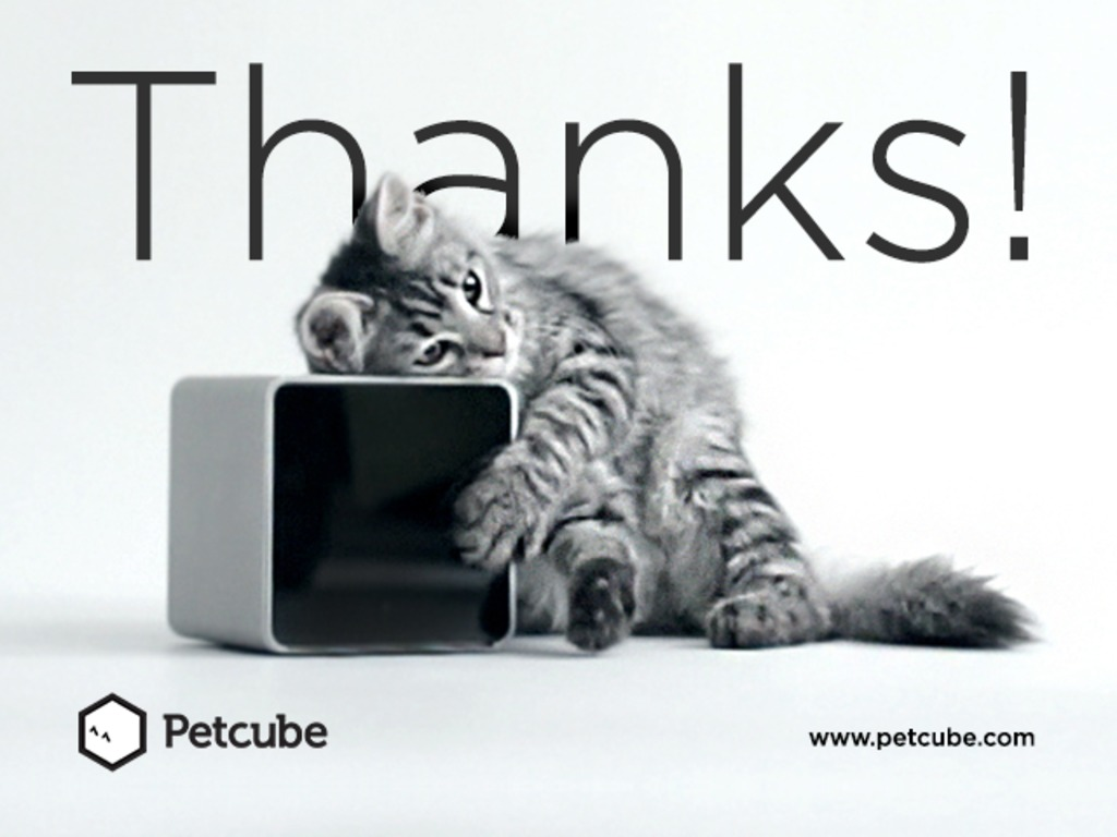Petcube — stay closer to your pet's video poster