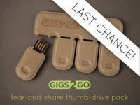 Gigs 2 Go: Tear & Share Thumb Drive Pack in Recycled Paper