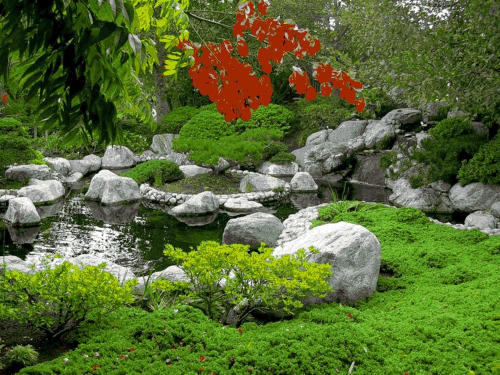 Japanese friendship garden haiku hunt by balboa park for Japanese friendship garden