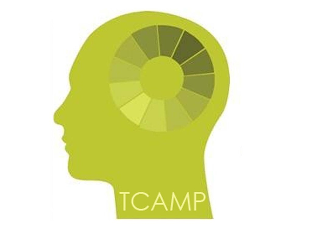 TCAMP: Transitional Creative Arts Mentoring Program's video poster