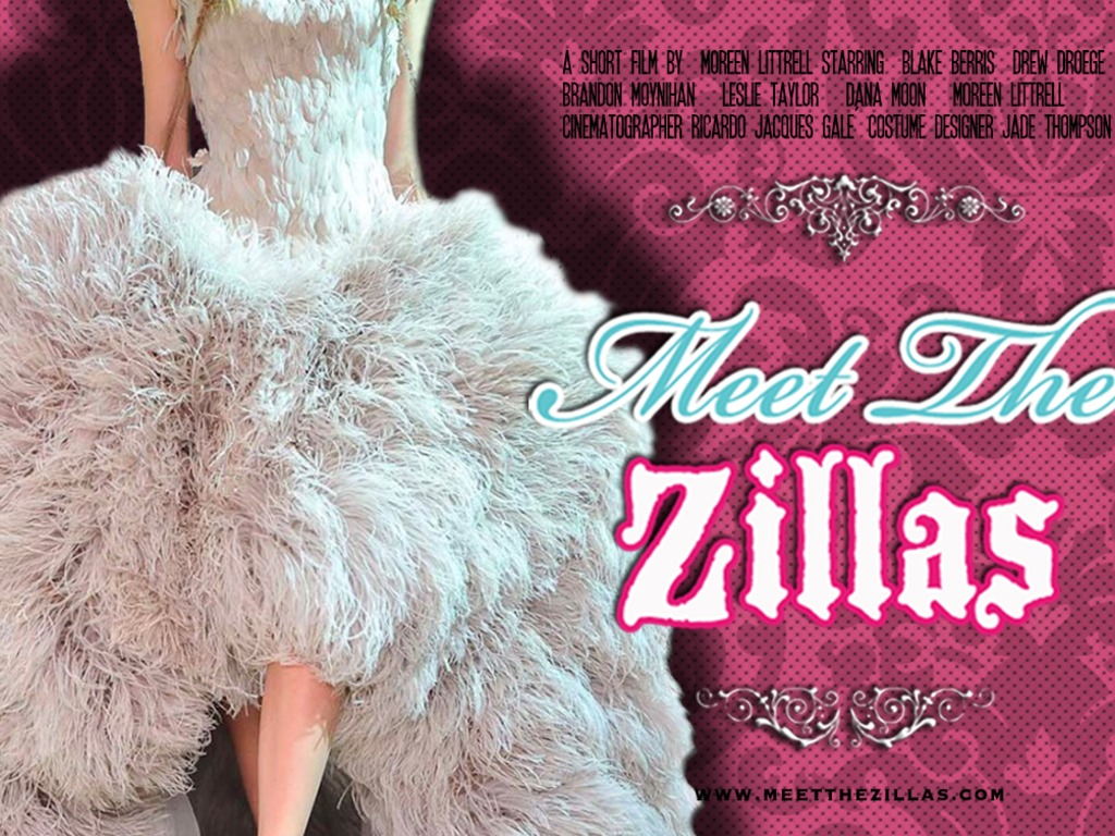Meet the Zillas's video poster