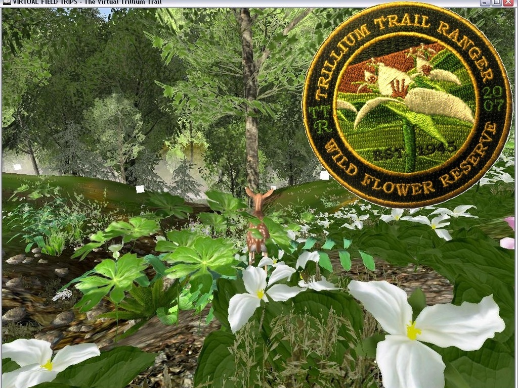 The Virtual Trillium Trail v.2.0 (Online & Cross-platform)'s video poster