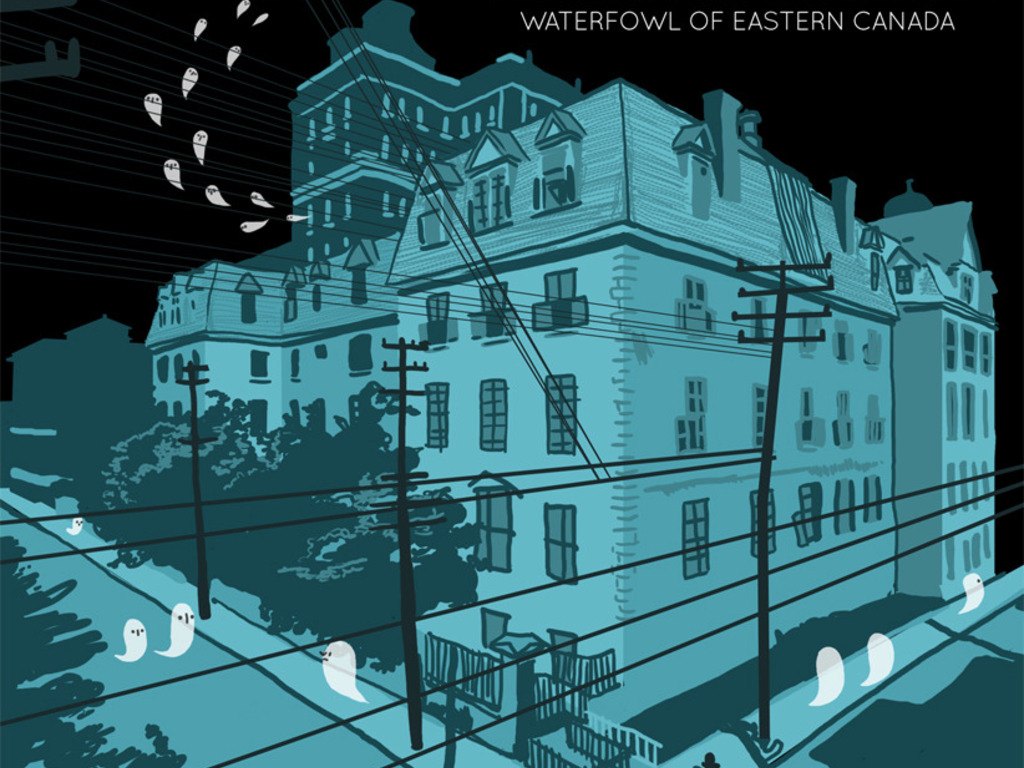 """A Seasonal Disguise releases """"Waterfowl Of Eastern Canada""""'s video poster"""