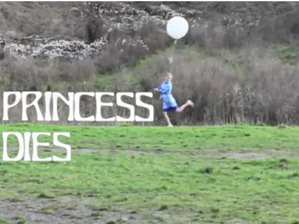 Princess Dies Residency at Wonder Valley Land Art Project's video poster