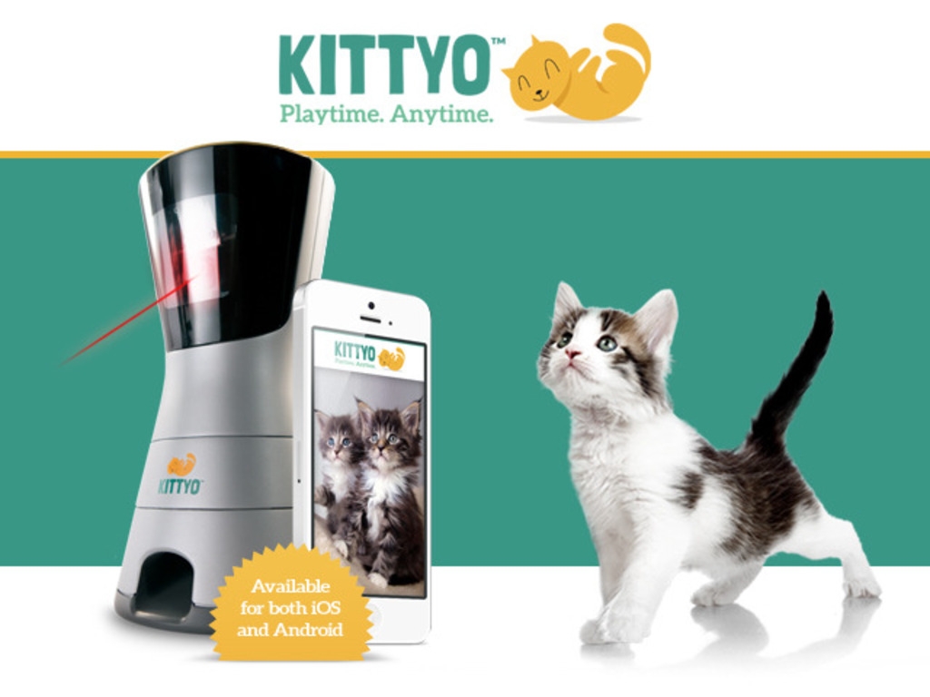 Kittyo: Play With Your Cat. Even When You're Not Home.'s video poster