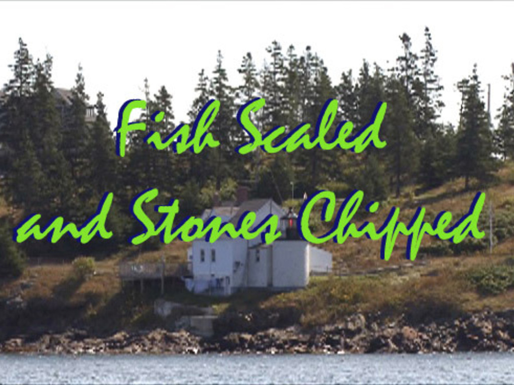 Fish Scaled and Stones Chipped's video poster