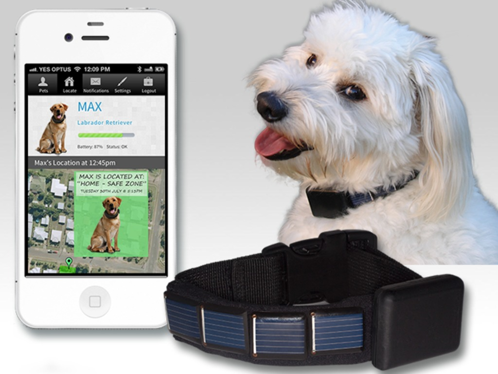 GPS Tracking for your pet, and it's SOLAR powered !'s video poster
