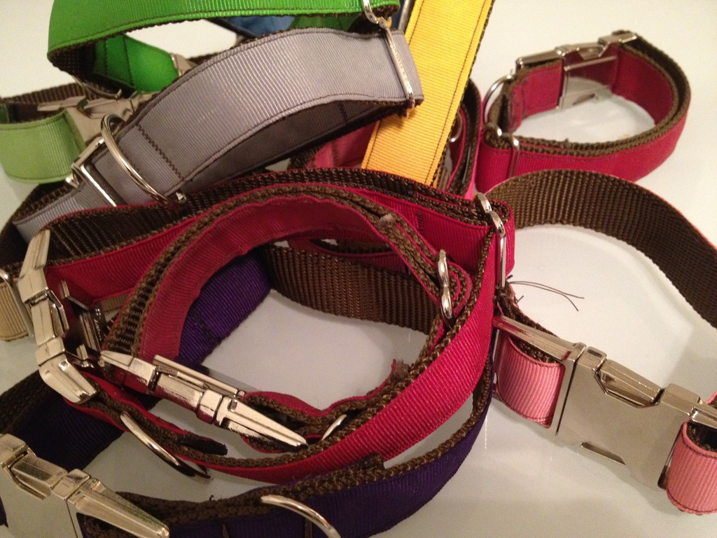 PANTONE Dog Collars by Mattie&Margot's video poster