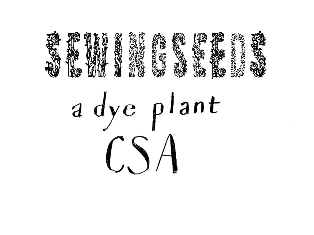Sewings Seeds: A dye plant CSA's video poster