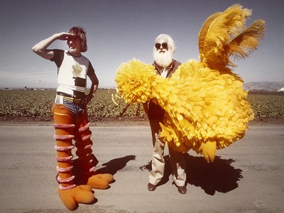 I AM BIG BIRD's video poster