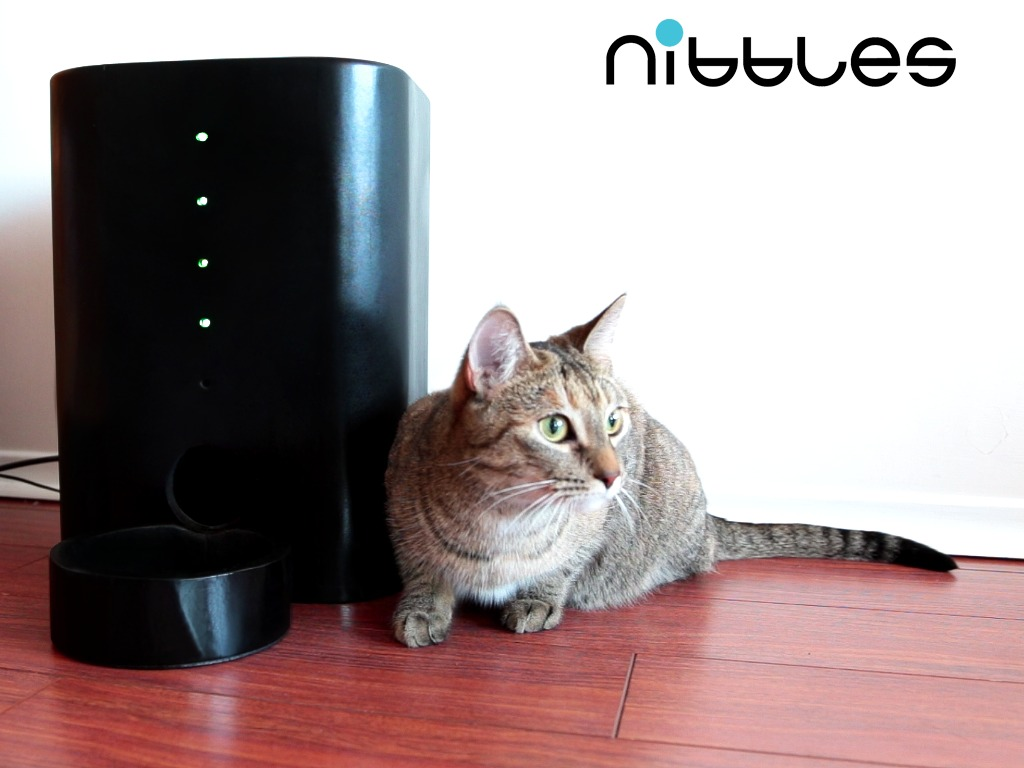 Nibbles - Feed and Watch your Pet on the Go's video poster