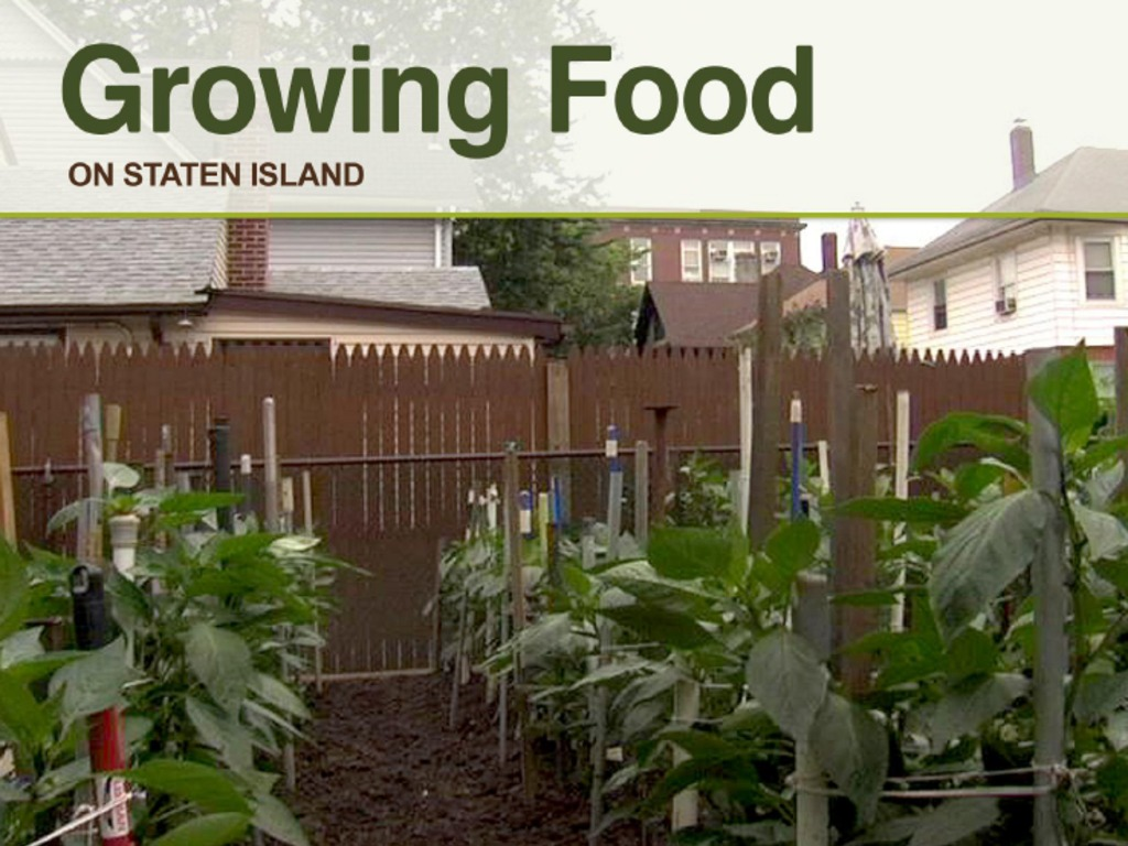 Growing Food on Staten Island's video poster