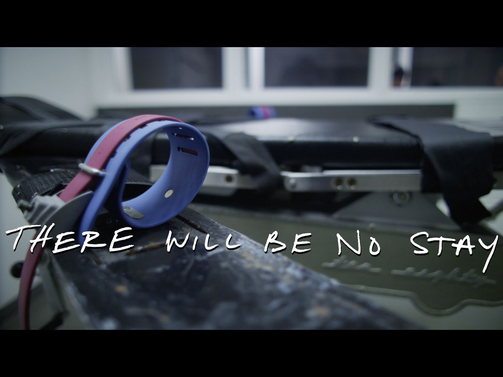 There Will Be No Stay - The Executioner's Documentary's video poster