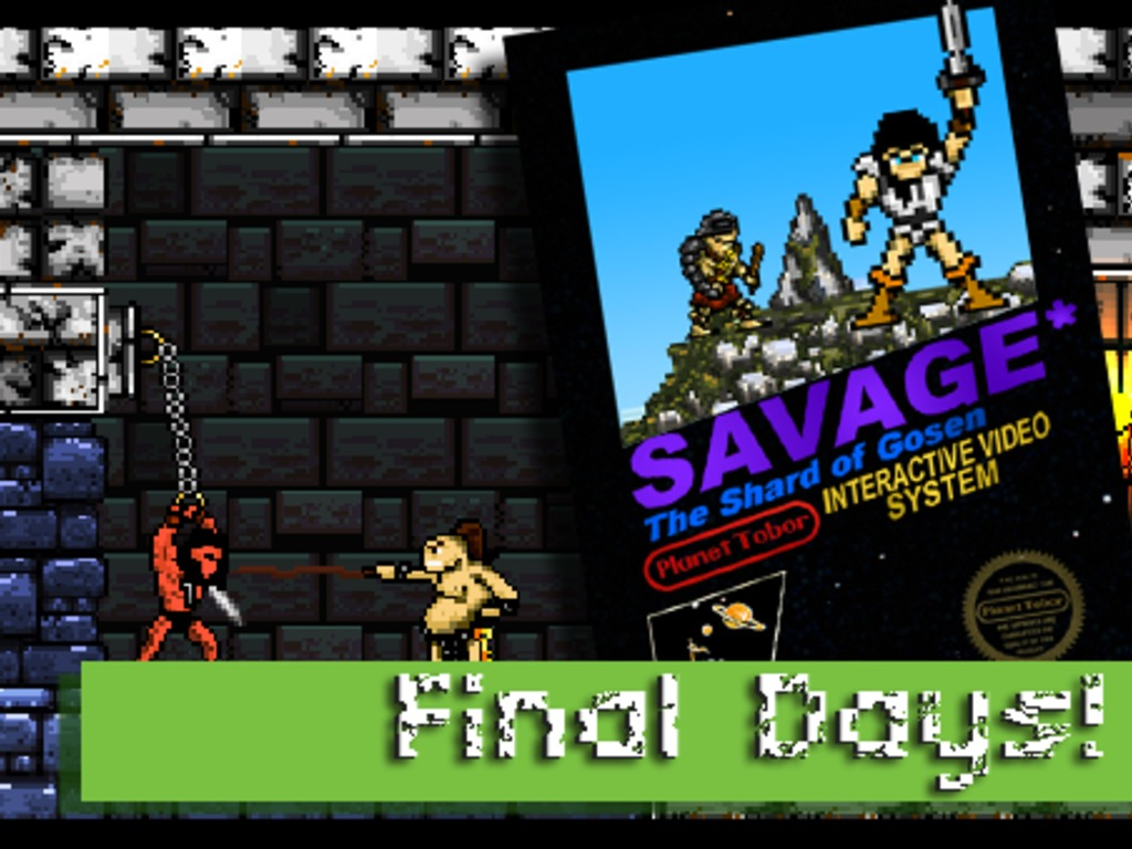 Savage: The Shard of Gosen's video poster
