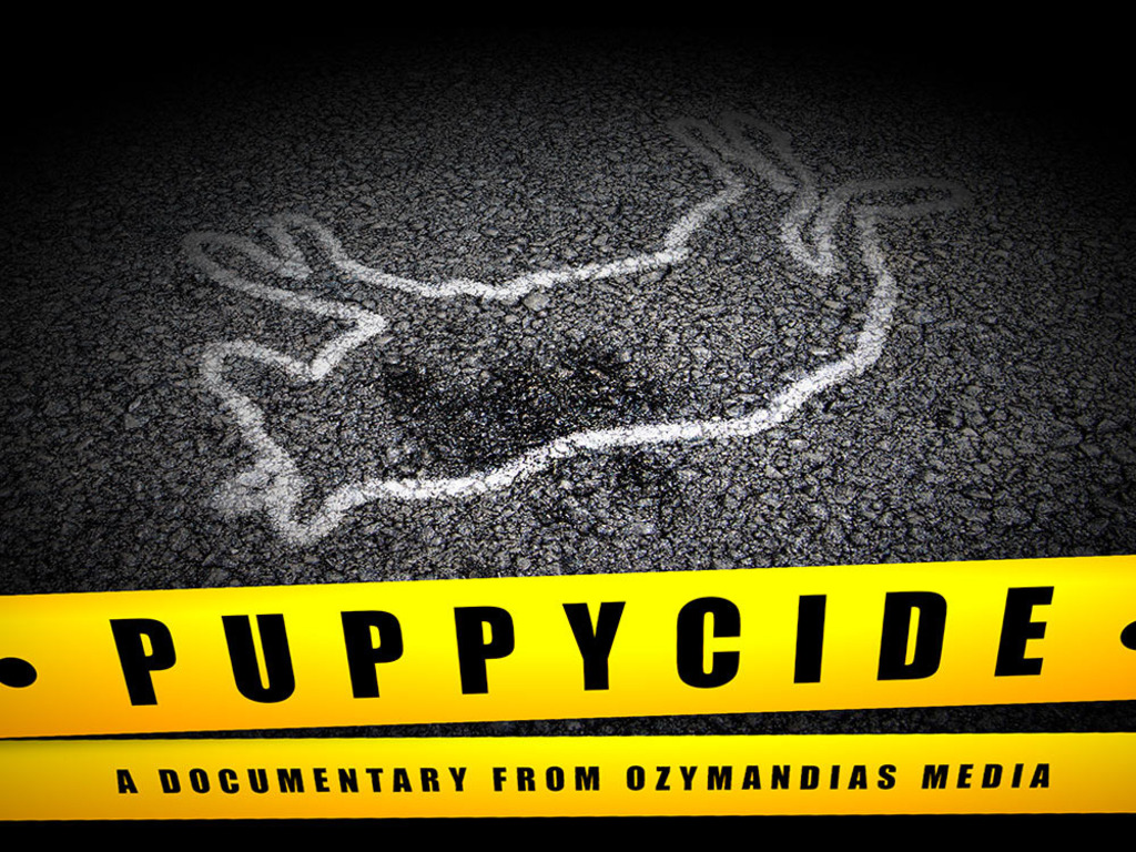 PUPPYCIDE: A Documentary's video poster