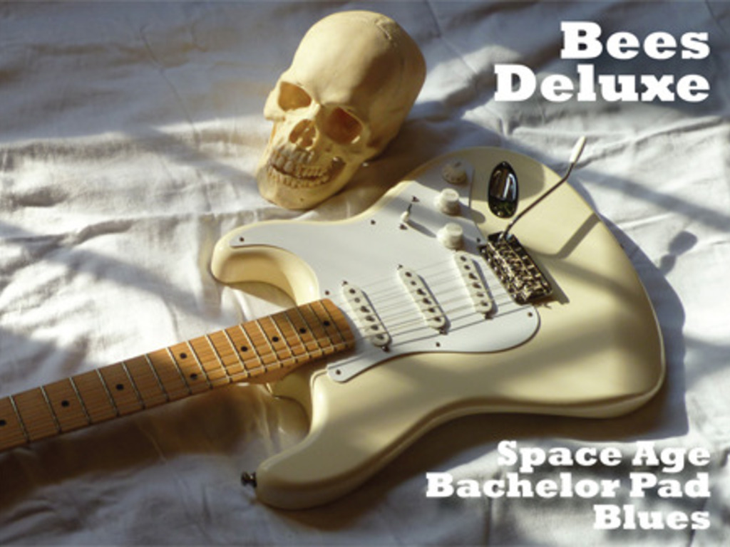 Space Age Bachelor Pad Blues - CD's video poster