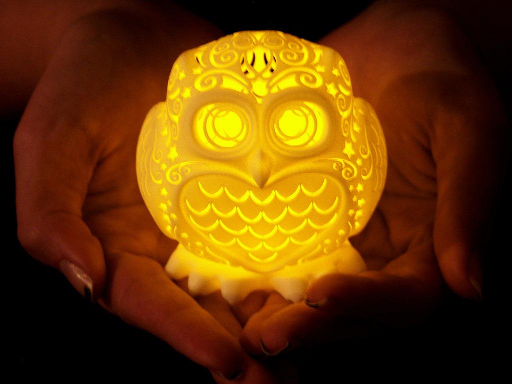 The Stelliform Owl's video poster