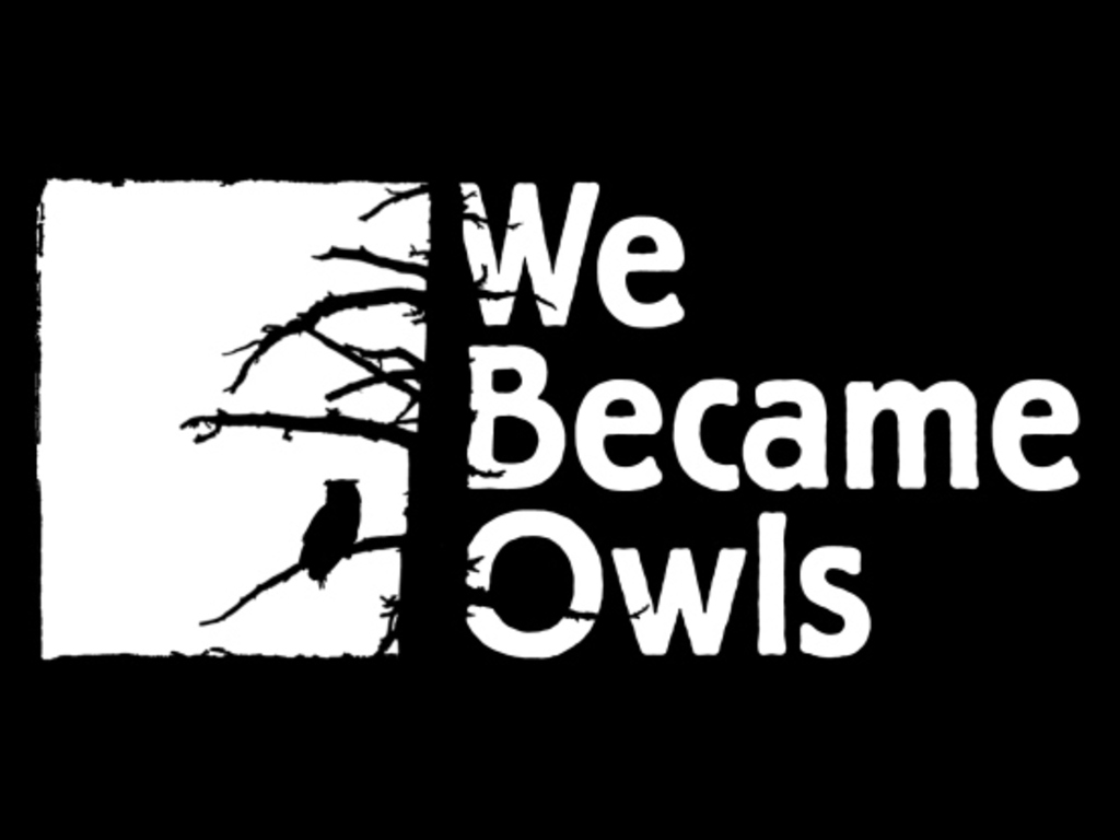 We Became Owls - Second EP's video poster