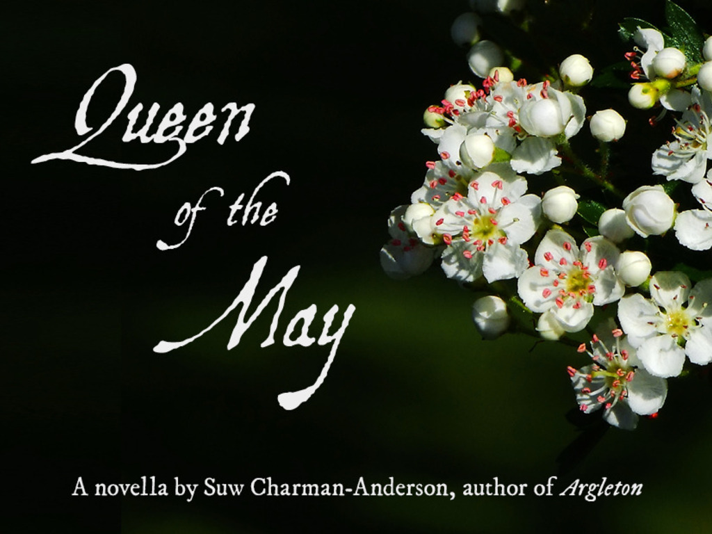 Queen of the May's video poster