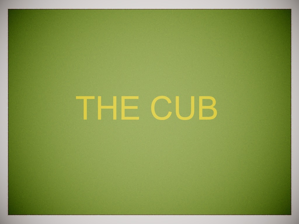The Cub's video poster