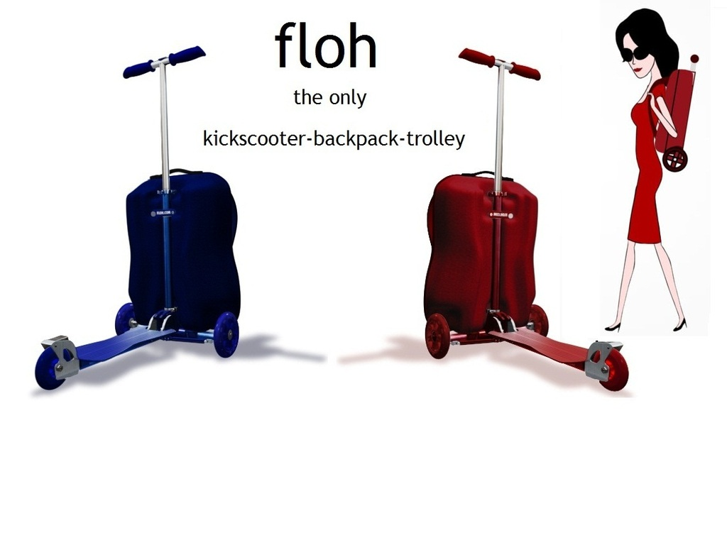 Go with the Floh!'s video poster