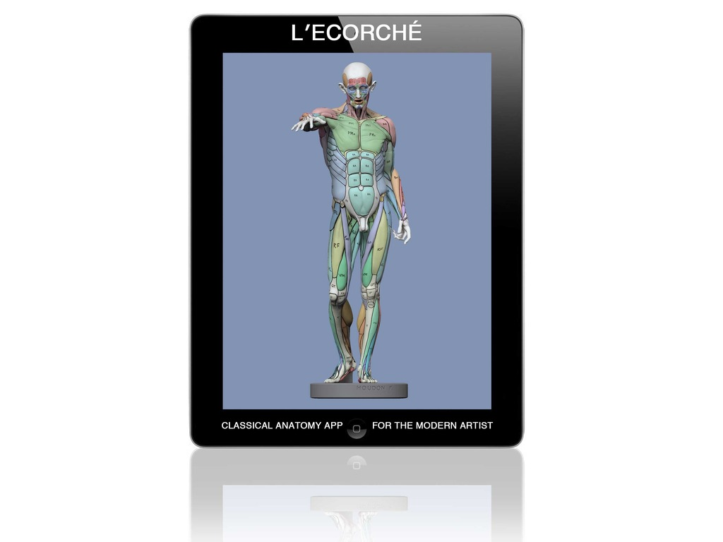 L'Ecorché: Classical Anatomy for Artists's video poster