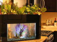 AquaSprouts Aquaponics: Self-Cleaning Aquarium & Garden