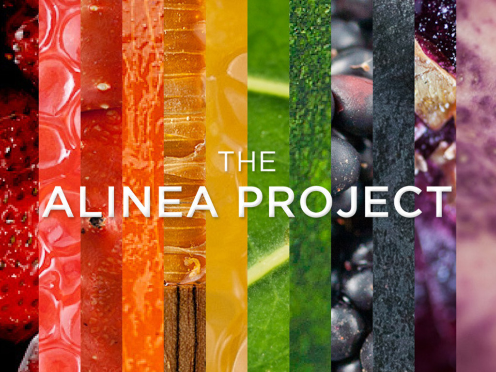 The Alinea Project's video poster