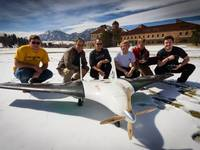 Team AREND Wildlife Conservation UAV
