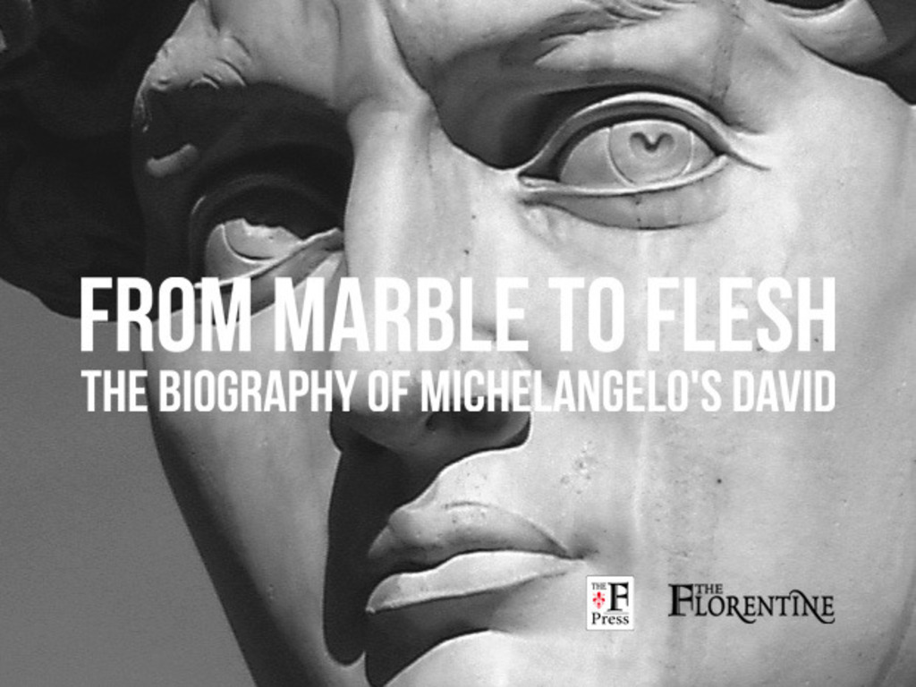From Marble to Flesh: the Biography of Michelangelo's David's video poster