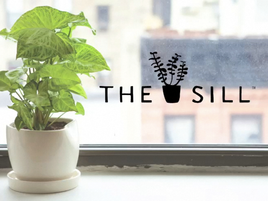The Sill - A Plant on Every Sill.'s video poster