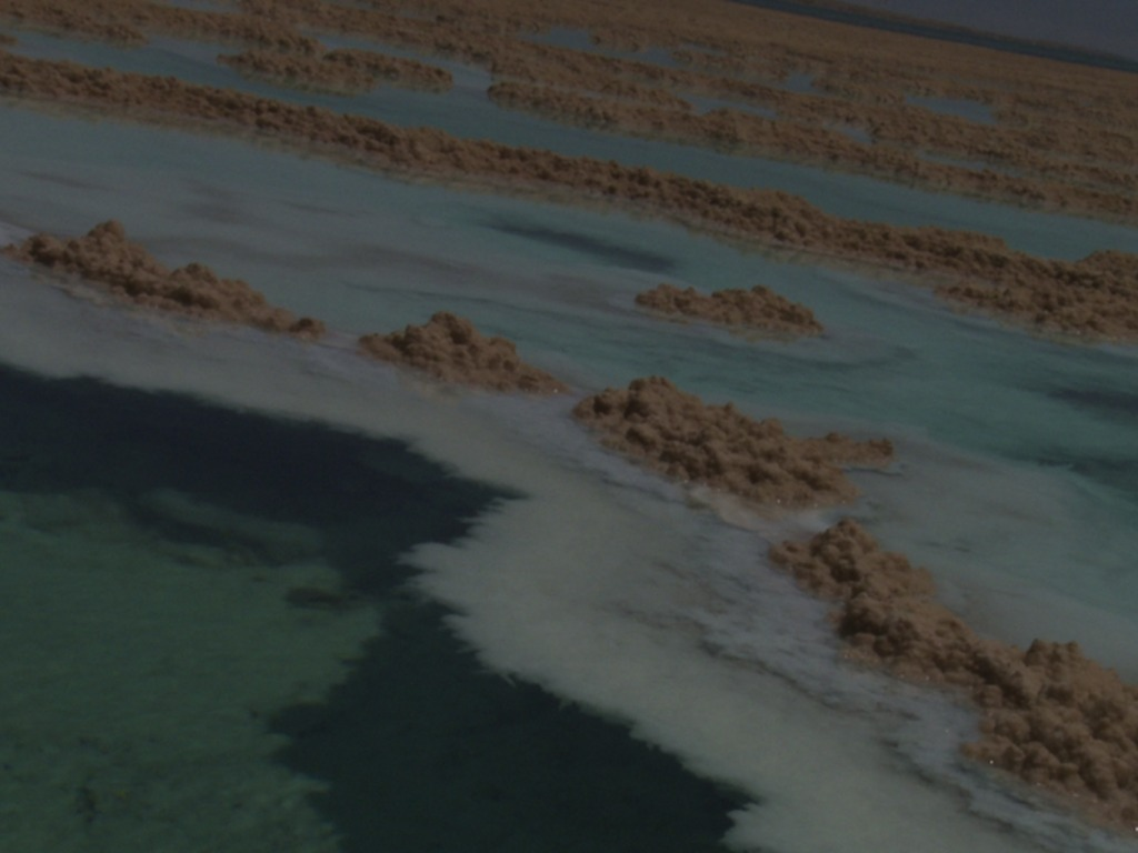 Salt of the Earth - A Dead Sea Movie by Sol Goodman and Hilla Medalia's video poster