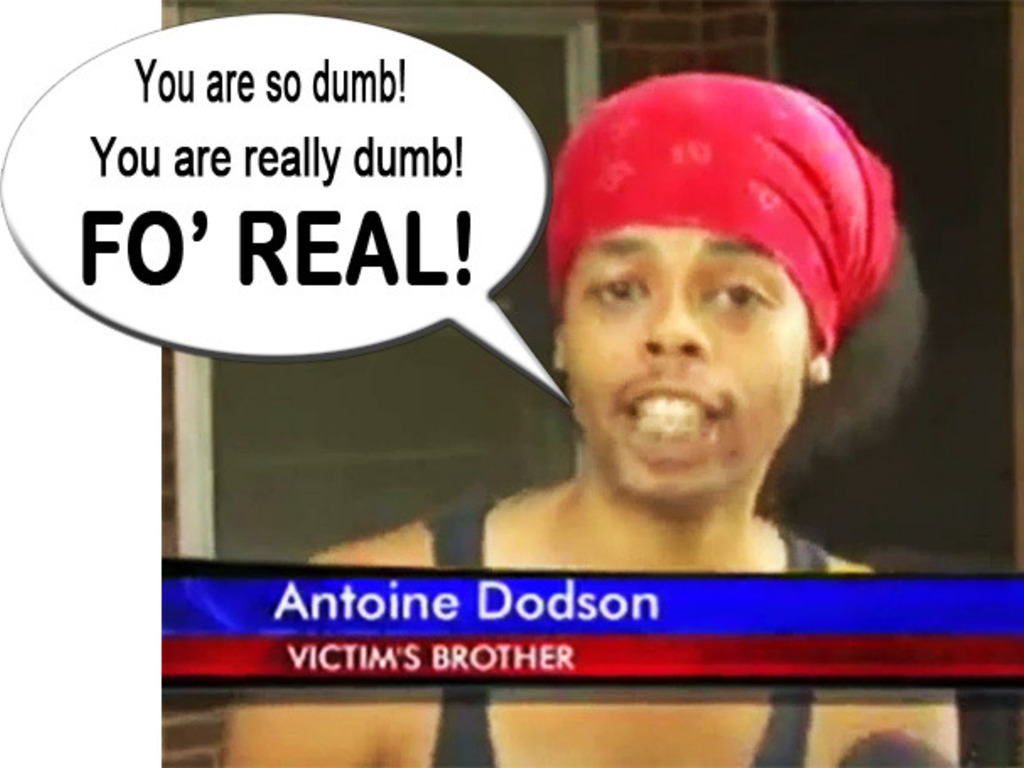 The Antoine Dodson Experience's video poster