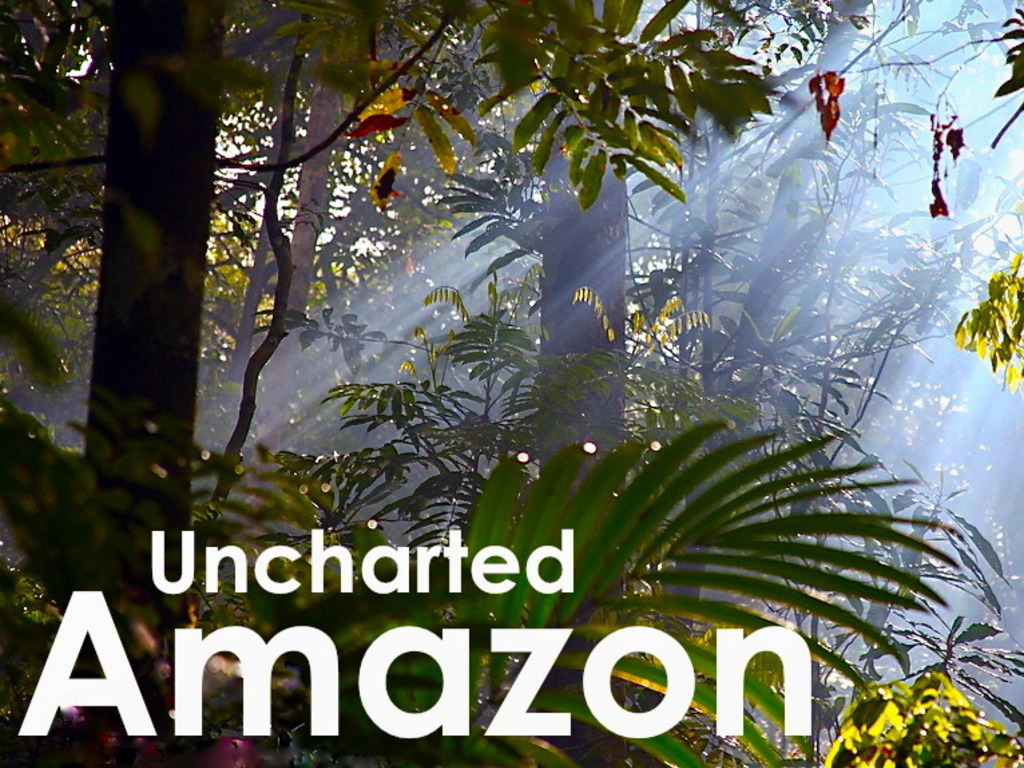 Uncharted Amazon's video poster