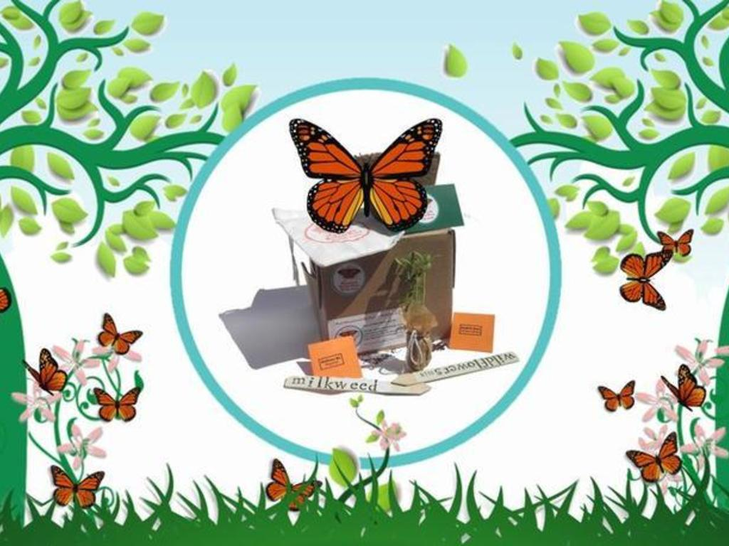 Feed the Monarch: Monarch Butterfly Survival Kit's video poster