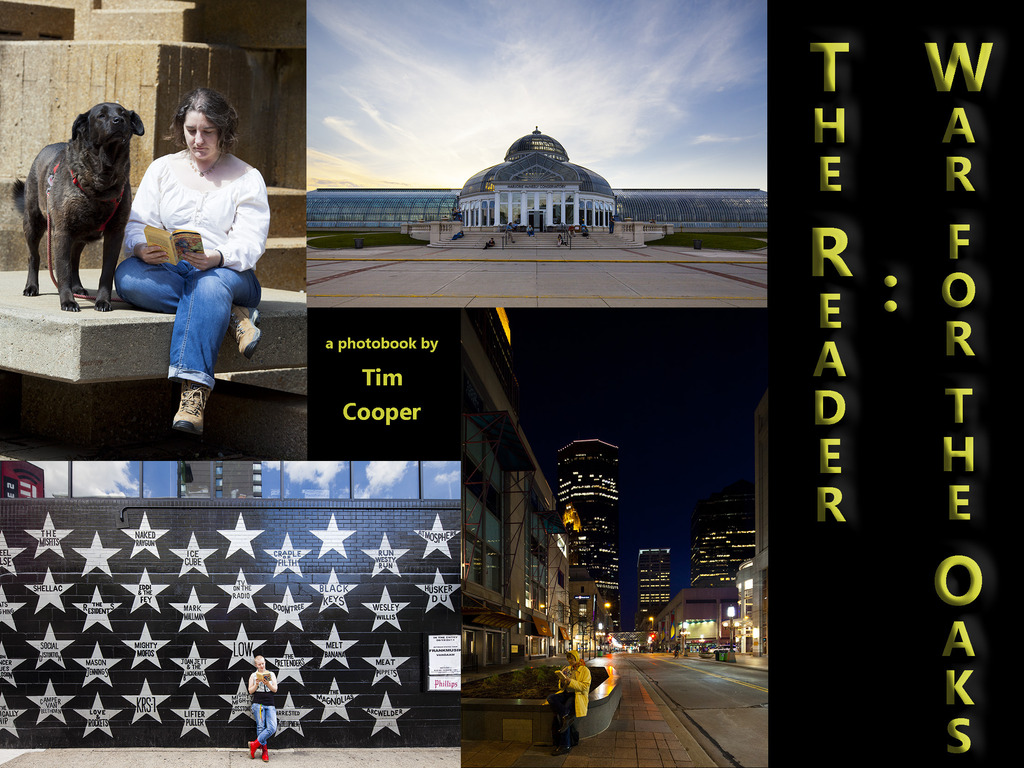 The Reader: War for the Oaks's video poster