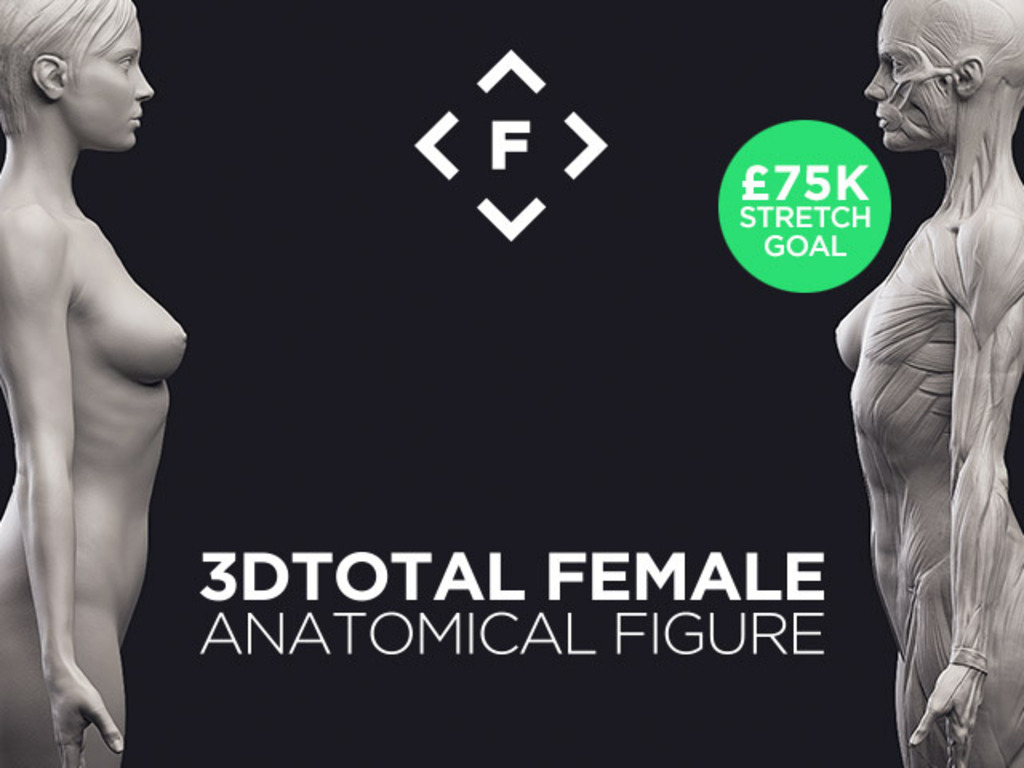 3dtotal's Anatomical Collection: Female Figure's video poster