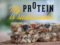 Hopper Cricket Bars. Sustainable Protein. Future Food!