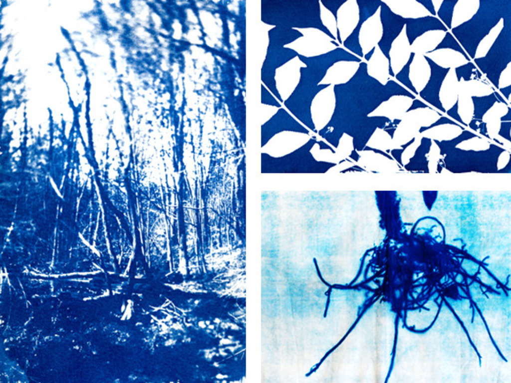 Cyanotype Photography Series -  Residency in Toronto's video poster