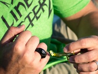 The Line Cutterz Ring - A ring that cuts fishing line
