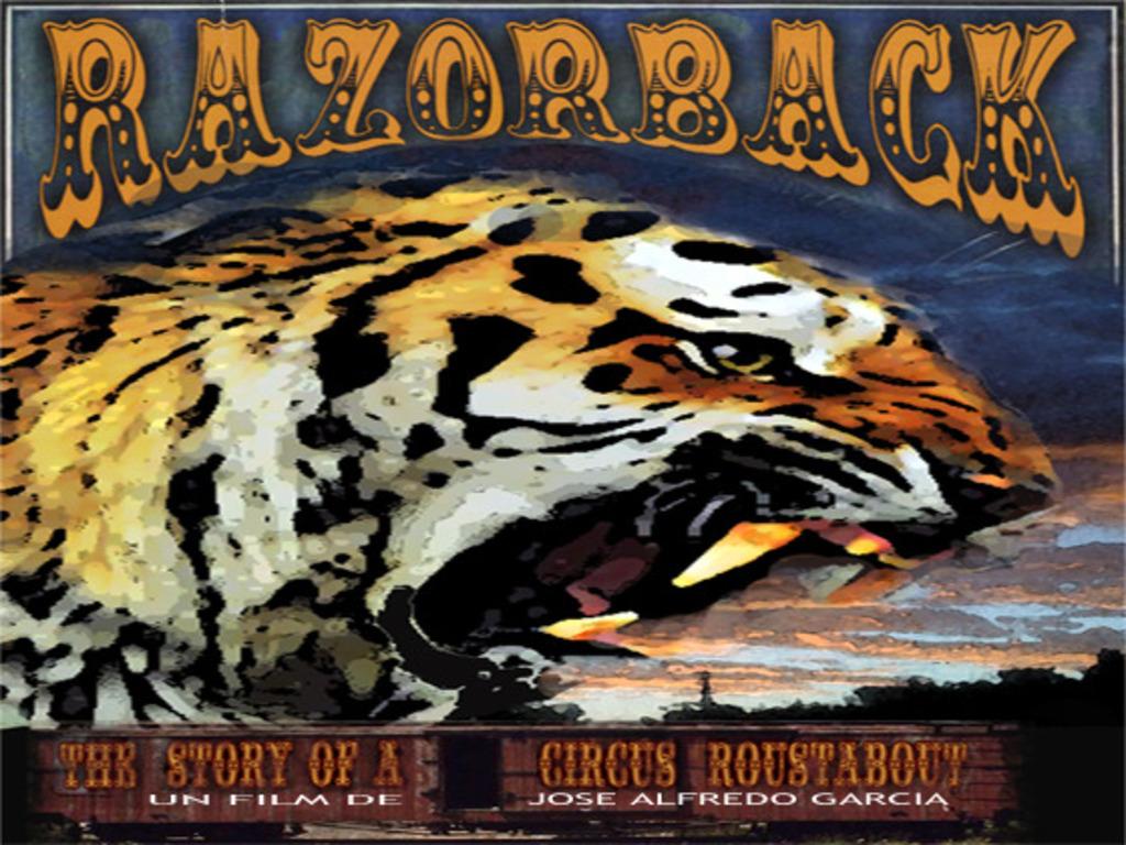 Razorback's video poster