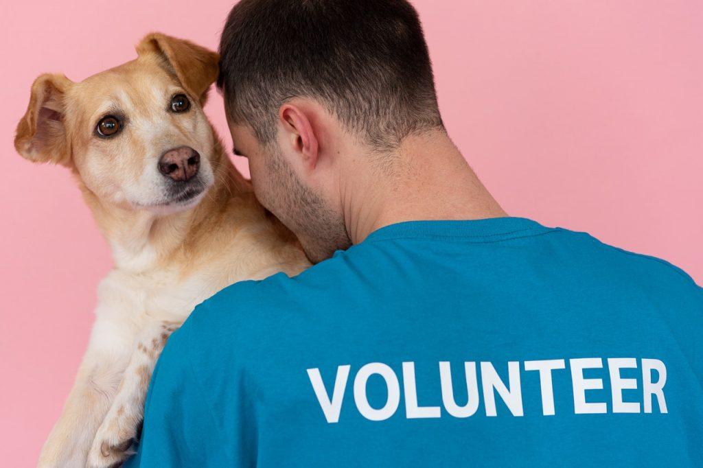 volunteer United states homeless