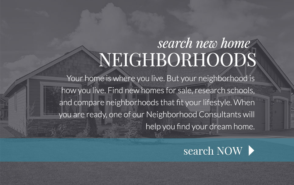 Search Neighborhoods