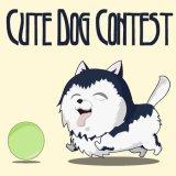 Cute Dog Contest