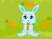 Bunny Crazy Time