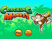 Cracking Monkey