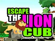 Escape the Lion Cub