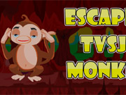 Escape Tvsj monkey